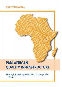 PAQI_StrategicPlan2014_web-pdf